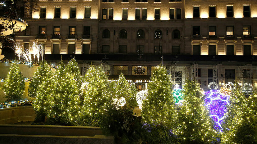 Christmas trees, Park Plaza Hotel