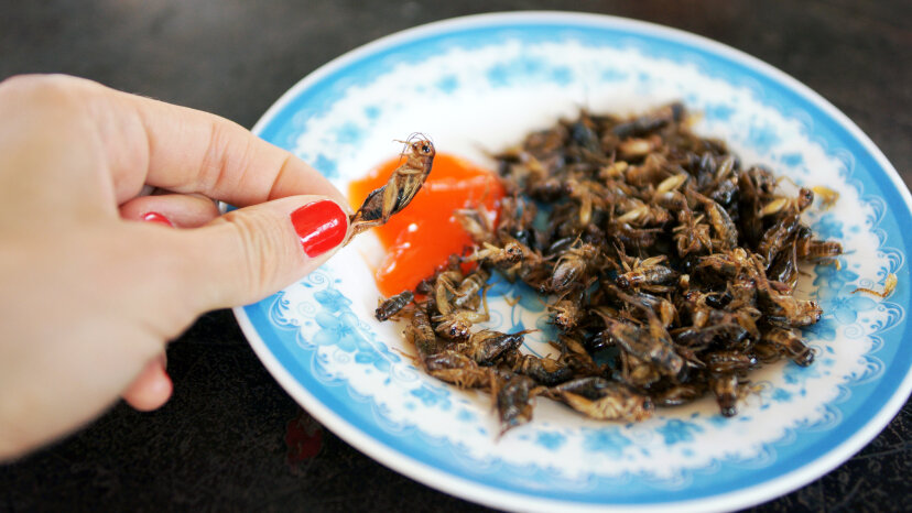 Fried crickets and other insects have been served up as a snack across Asia for centuries. Olena Tymchenko/Getty Images