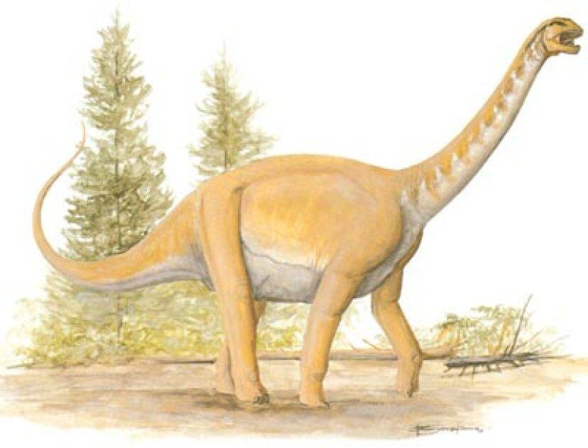 バラパサウルス