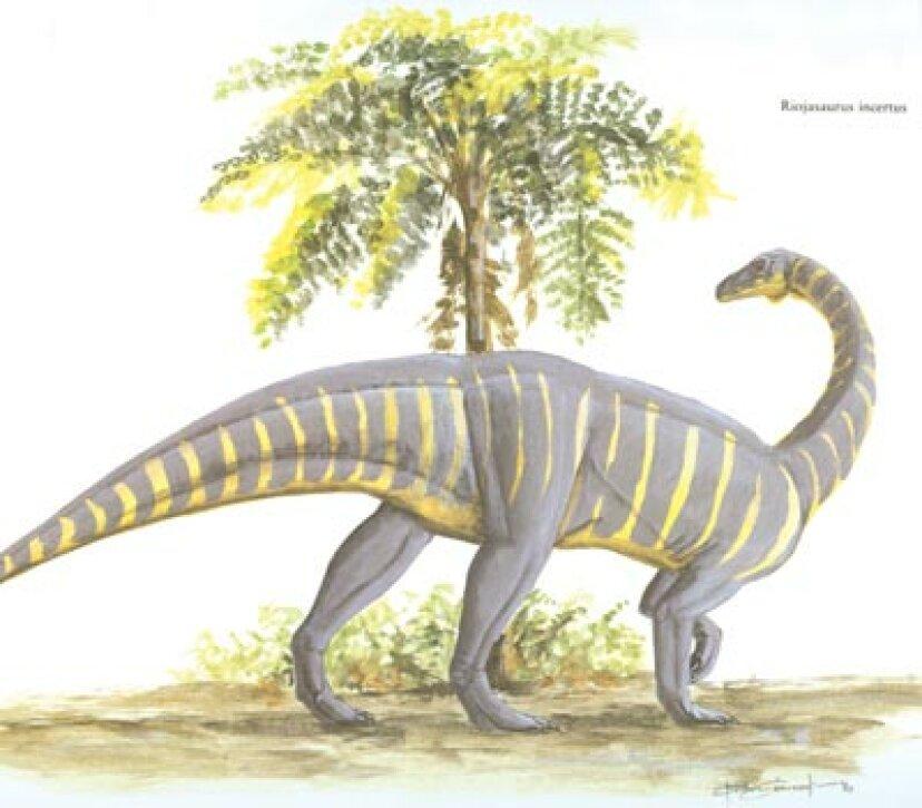 リオハサウルス
