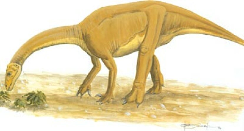 ユンナノサウルス