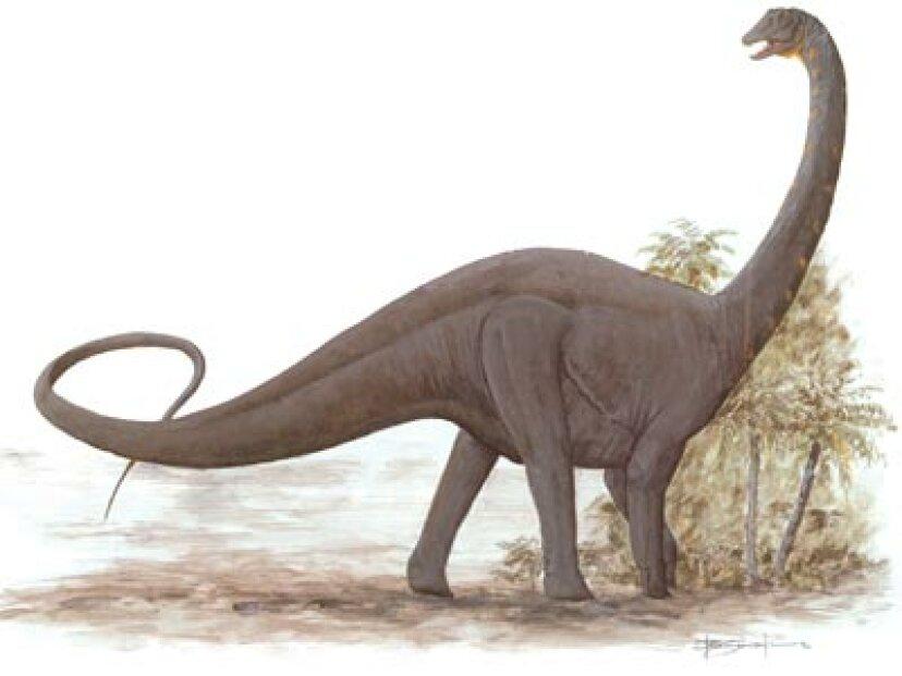アンタルクトサウルス