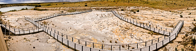 dinosaur footprints in dry river bed