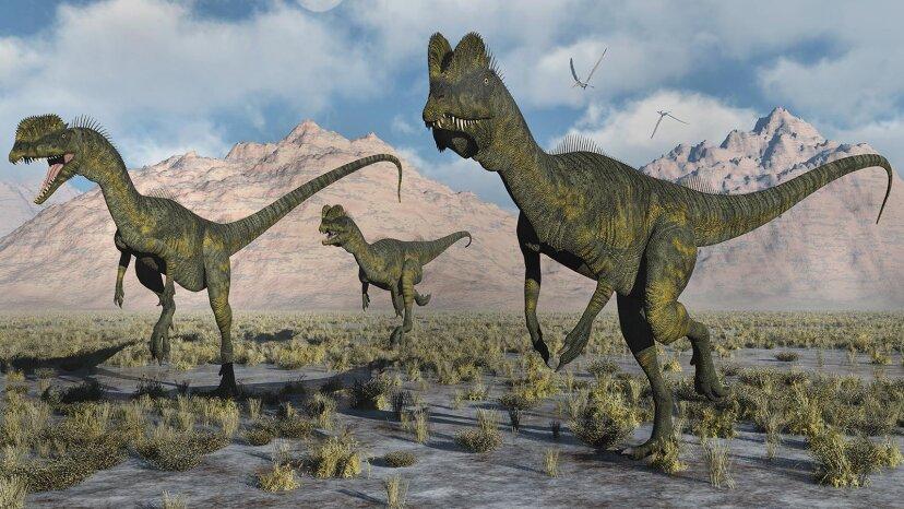 本物のディロフォサウルスが「ジュラシックパーク」バージョンを飼いならしているように見せます