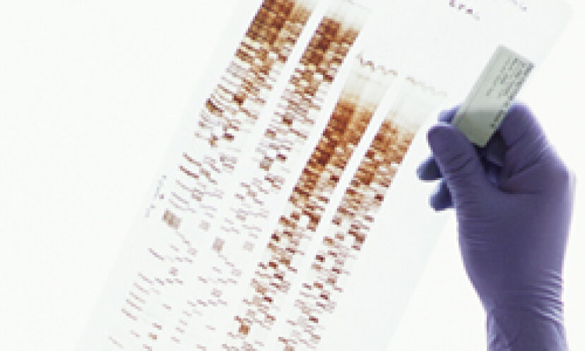 DNAプロファイリングのしくみ