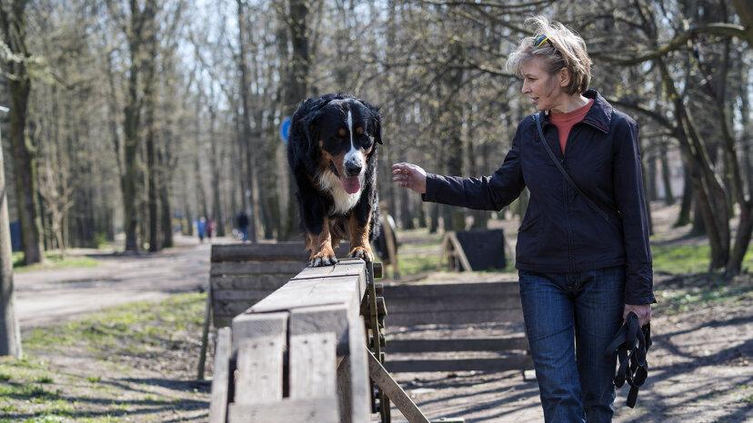 woman dog at dog park