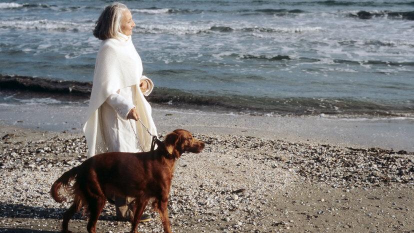 woman walking dog on beach