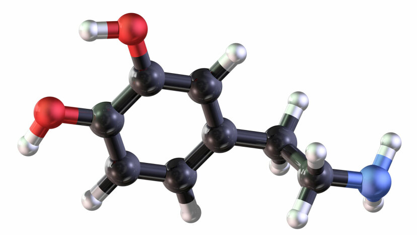 ball and stick  model of dopamine