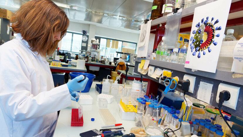 疫学者は公衆衛生を保護する「病気の探偵」です