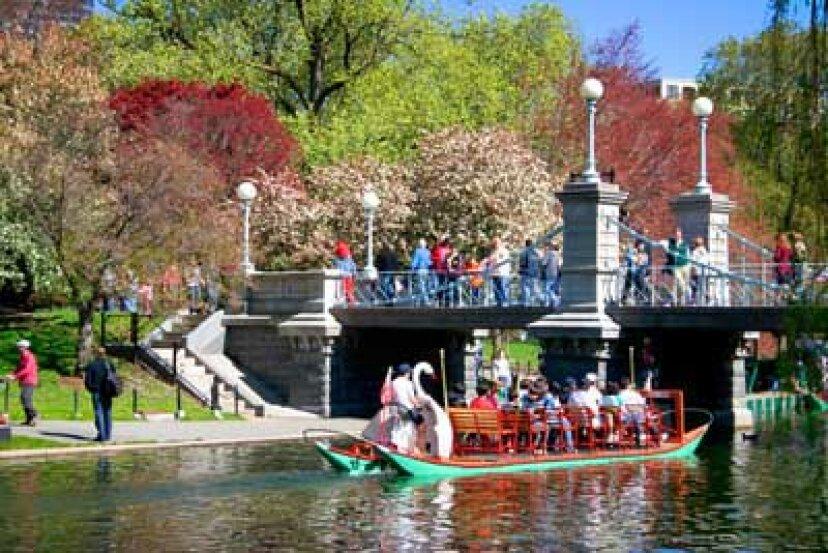 家族での休暇:ボストンのパブリックガーデン