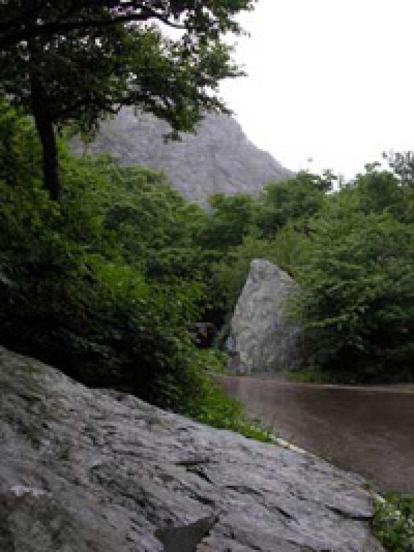 家族での休暇:グリーン山脈