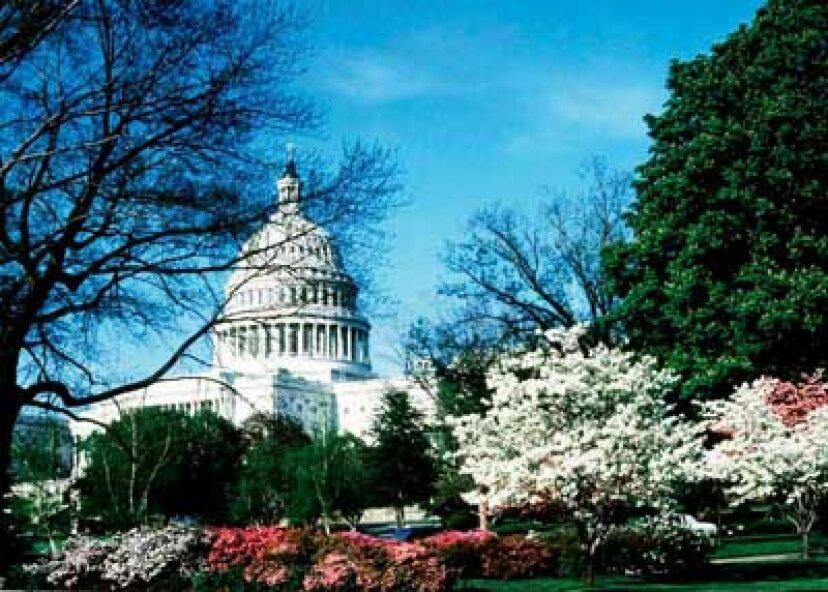 家族での休暇:米国議会議事堂