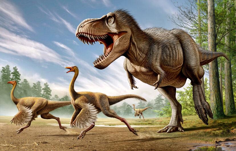 tyrannosaurus rex chasing strutiomimus dinosaurs