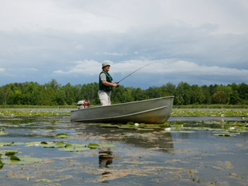 釣りレポートはどのように作成されますか?