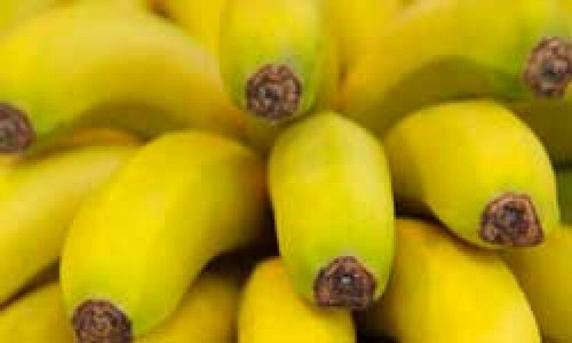 子供がバナナに食物アレルギーを持つことは一般的ですか?