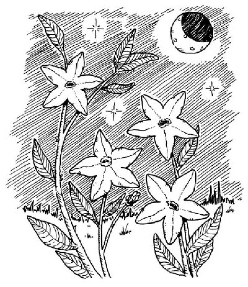 子供のための花の工芸品