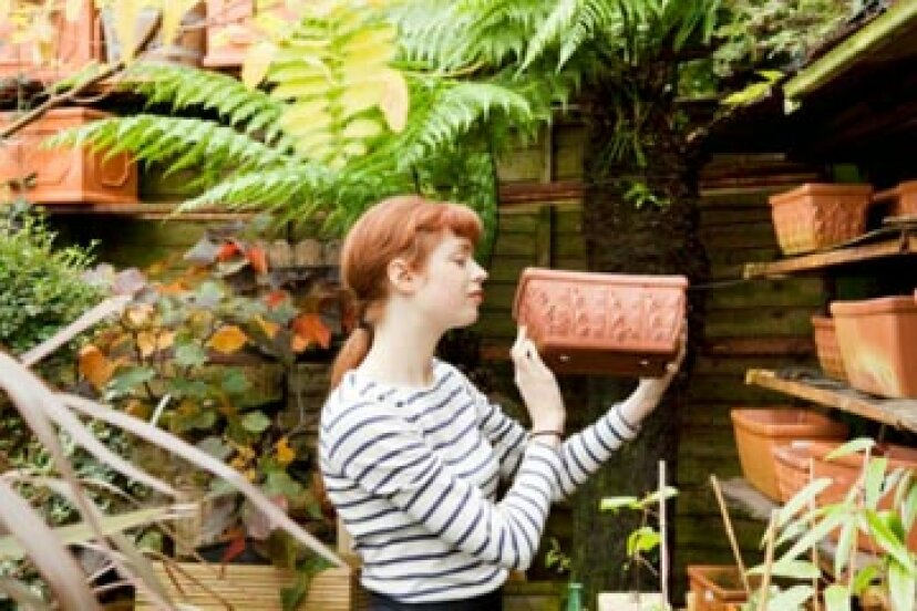 芝生と庭の愛好家のためのギフトガイド