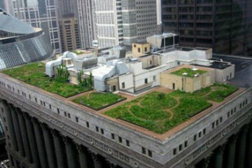 屋上緑化と白い屋根:大量のエネルギーを節約するローテクな方法