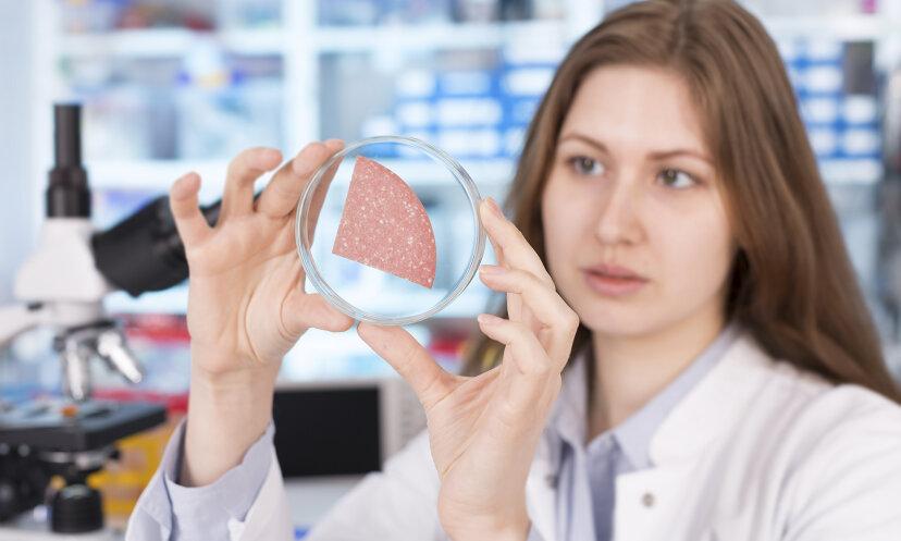 実験室でどのように肉を育てますか?