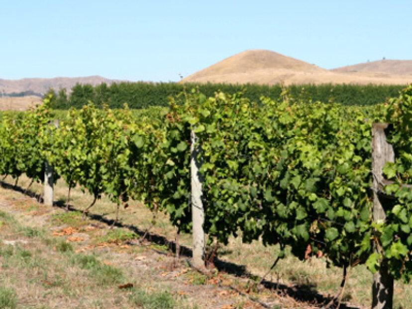 ホークスベイワイン産地への究極のガイド
