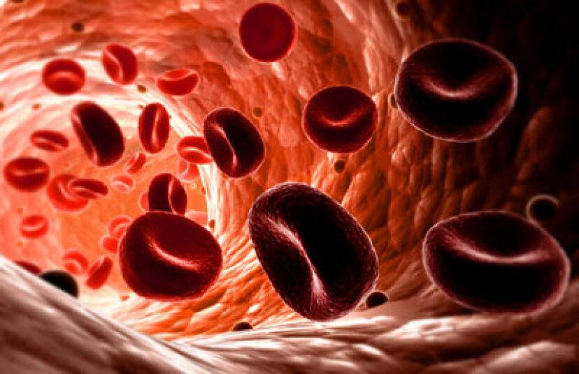 心臓はどのようにそしてなぜそれ自身に血液を送り出すのですか?