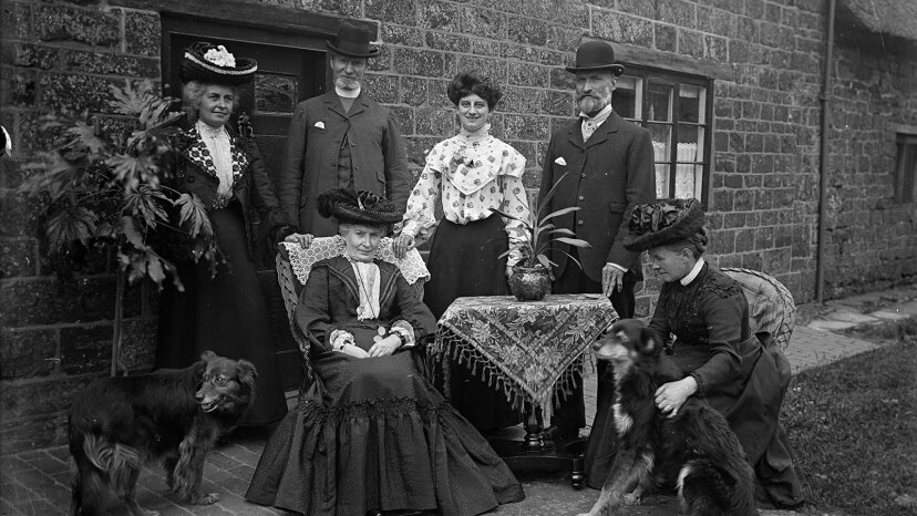 Edwardian family, Aspidistra