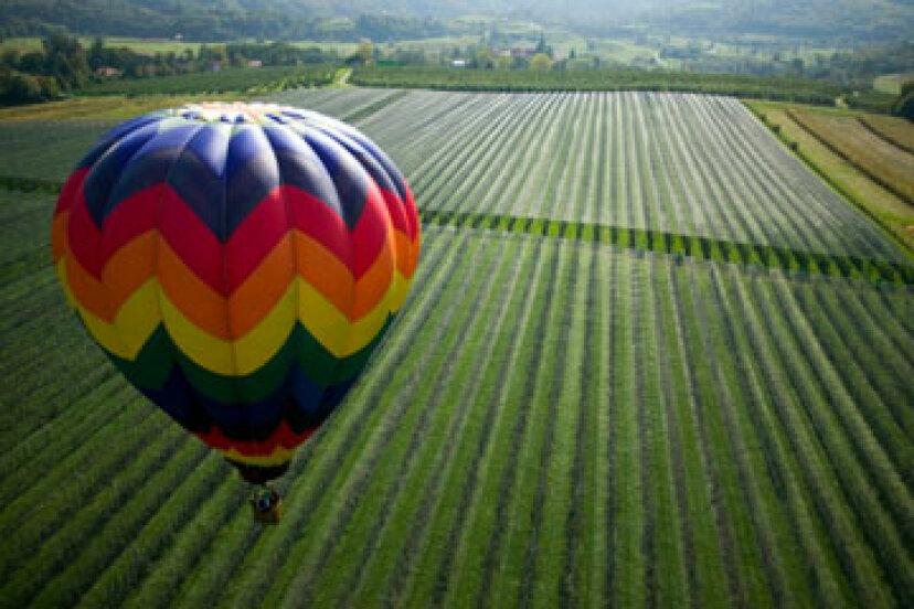 ワインの国を熱気球で通り抜けることはできますか?