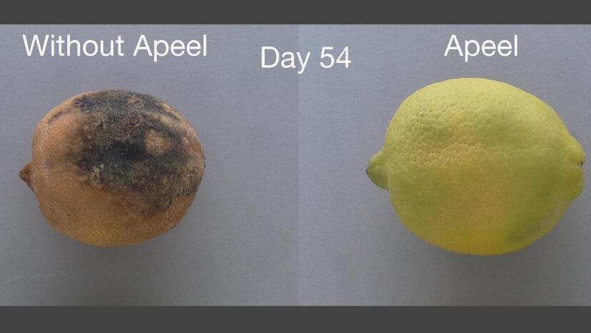 Natural Spray verdreifacht die Haltbarkeit von Obst und Gemüse
