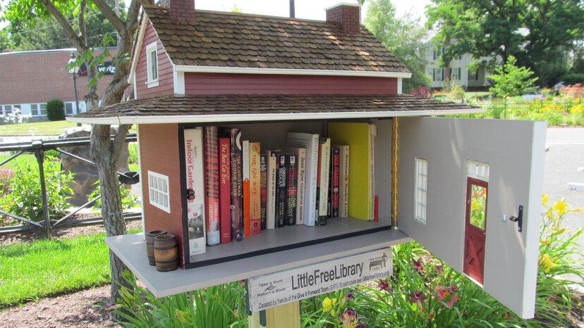 トッド・ボルが小さな図書館運動を始めた方法