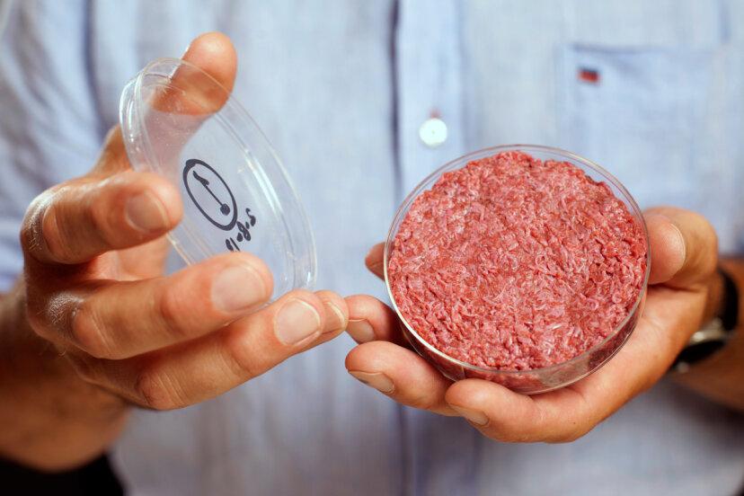 幹細胞から肉を育ててもらえますか?