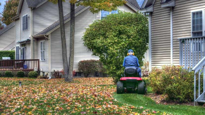 ¿Por qué debería dejar de rastrillar las hojas otoñales?