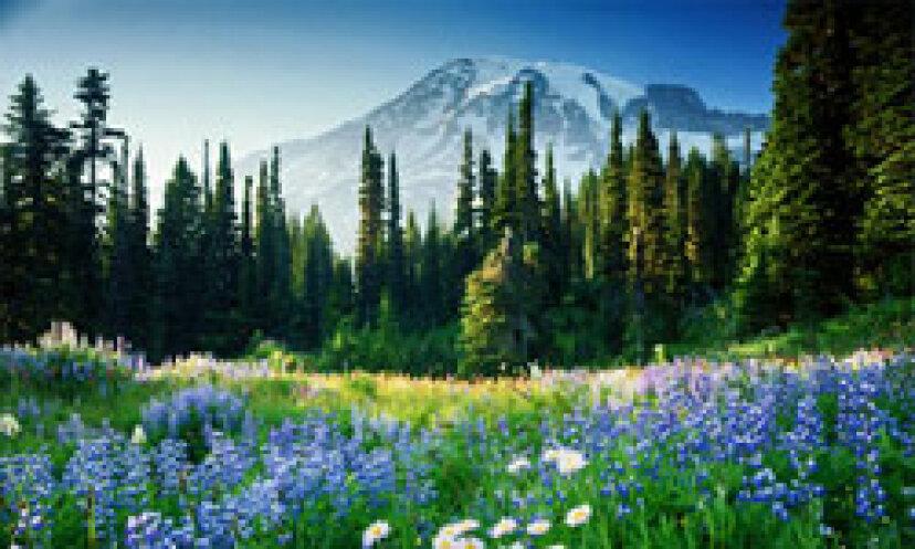 国立公園の写真