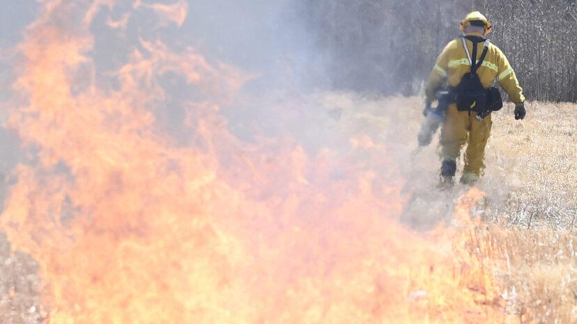 New Jerseys Pinelands sind reif für ein Wildfire vom Typ Australien