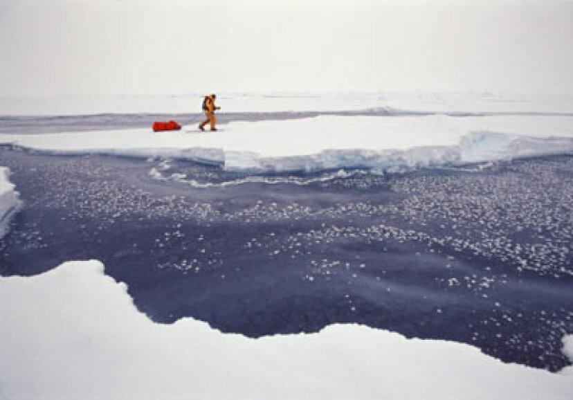 北極探検隊の紹介