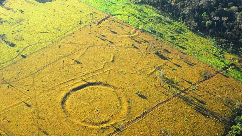 Hundreds of earthwork geoglyphs have been uncovered in the Amazon in recent decades. Jenny Watling/University of Exeter