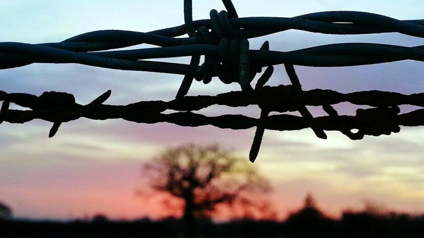 How did rural communities use barbed wire fences to communicate via telephone? Neil Irving/EyeEm/Getty Images