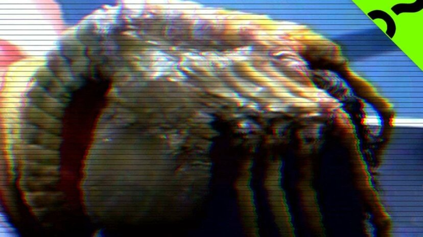 Monster Science: Monstrous Sex Ed: The Alien Facehugger HowStuffWorks