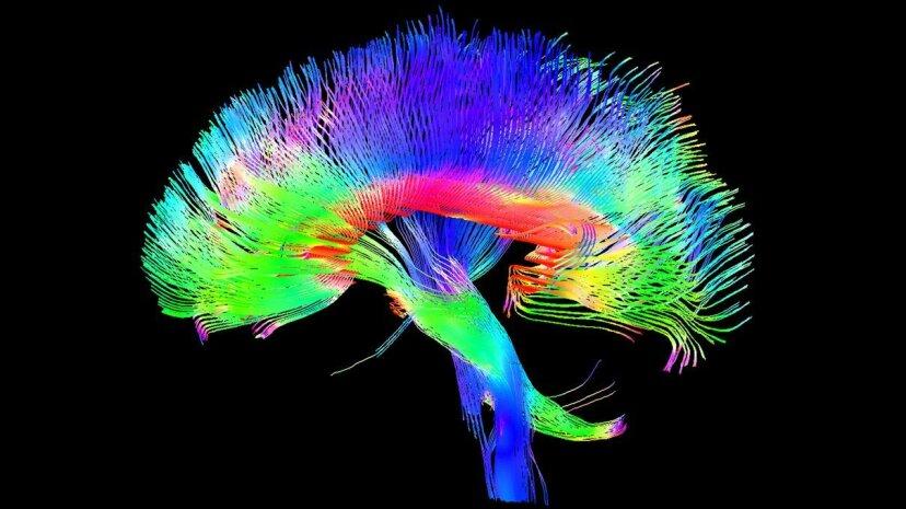 脳波と「感情的なID」がパスワードとPINを置き換える可能性がある