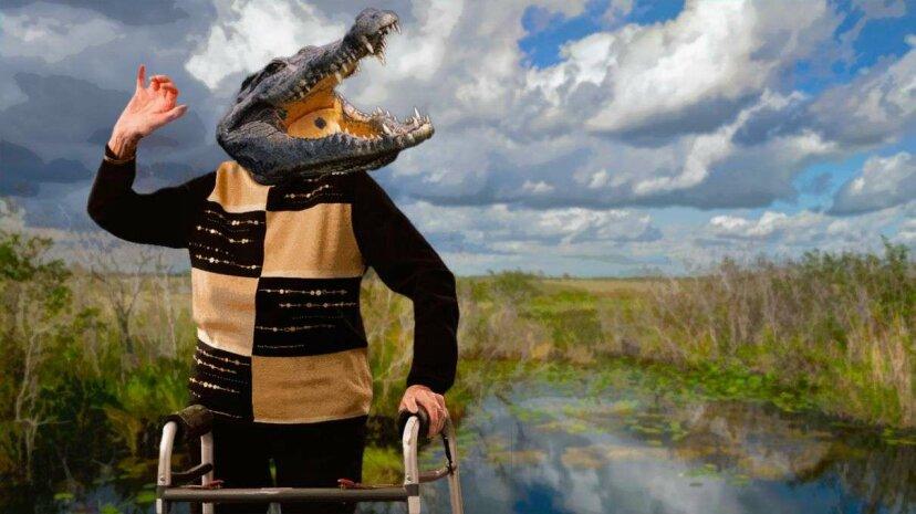 Nilkrokodile ziehen sich nach Südflorida zurück?