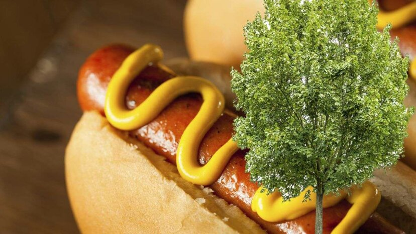 Could tree-sourced cellulose change the way hot dogs are made and make us healthier in the process? bhofack2/ Coldimages /iStockphoto