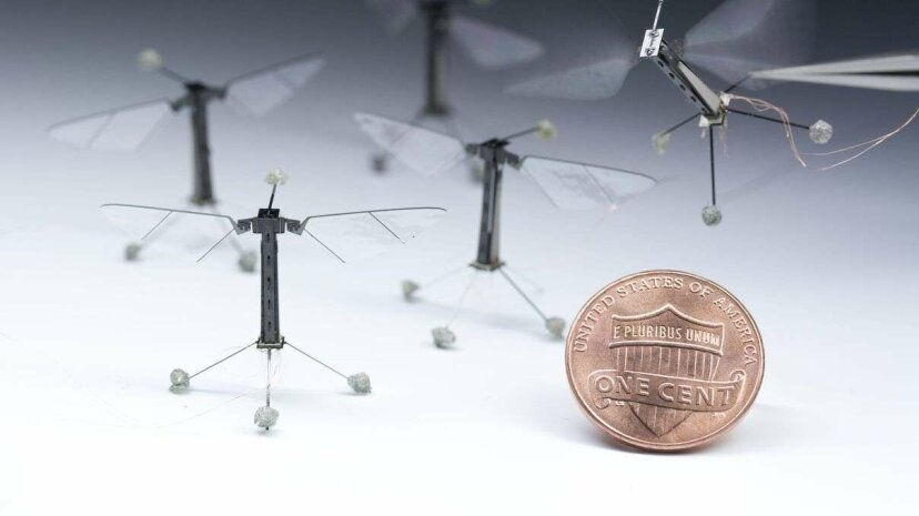The RoboBee is a miniature robot that has long been able to fly. But what if the RoboBee lands in water? Using a modified flapping technique, researchers at the Harvard John Paulson School and Wyss Institute have demonstrate that the RoboBee can also s... Harvard University