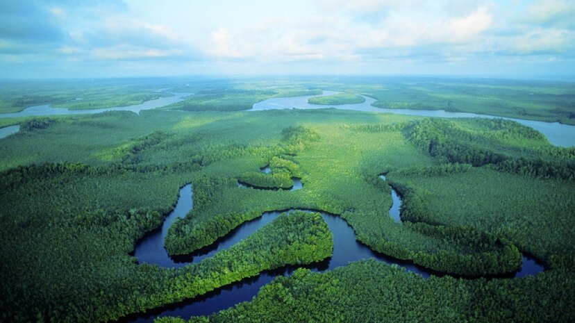 The Congo River basin in Central Africa is home to massive amounts of peatland, a recent scientific analysis has discovered Robert Caputo/Getty Images