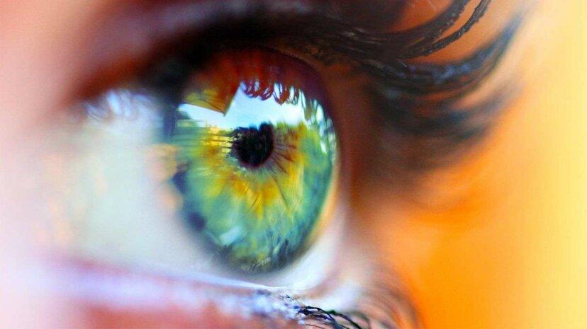 ラッキーテトラクロマットは最大1億色の世界を見る
