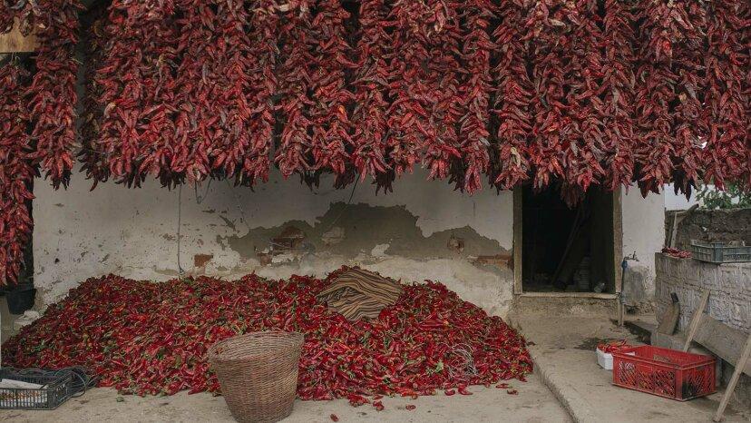 Paprika ist weit mehr als nur teuflischer Eistaub