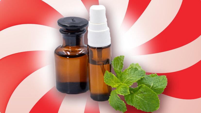 9 usos refrescantes del aceite de menta