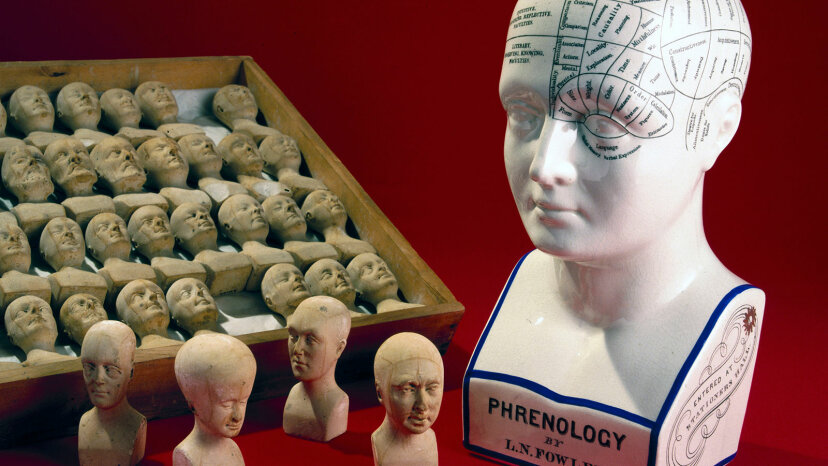 phrenology diagram and heads