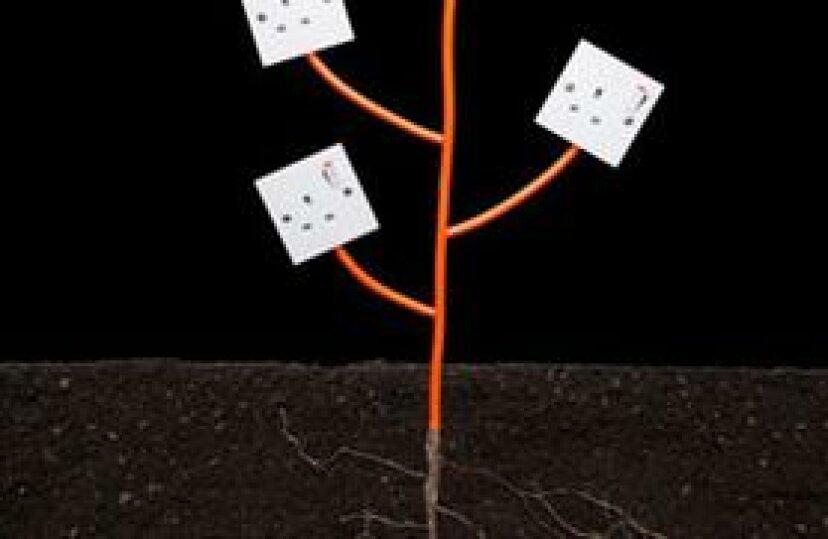 家庭用エネルギーモニターの選び方