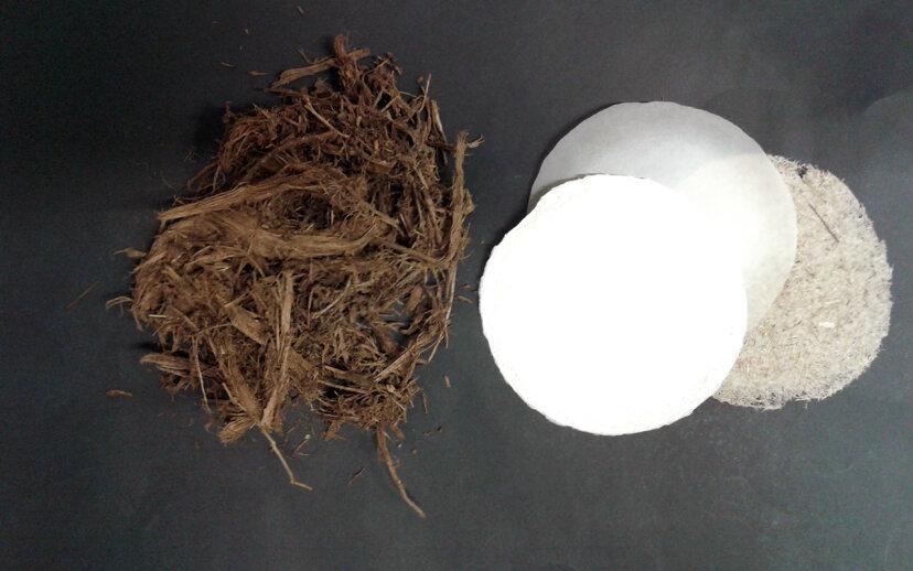 Poo-Pyrus: Umweltfreundliches Papier aus Poop