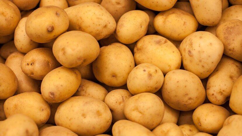 Wie man Kartoffeln lagert