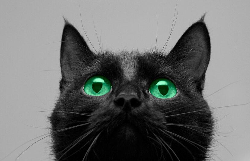 5 supersticiones con orígenes extrañamente racionales